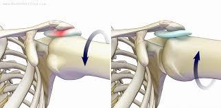 چرخش استخوان بازو