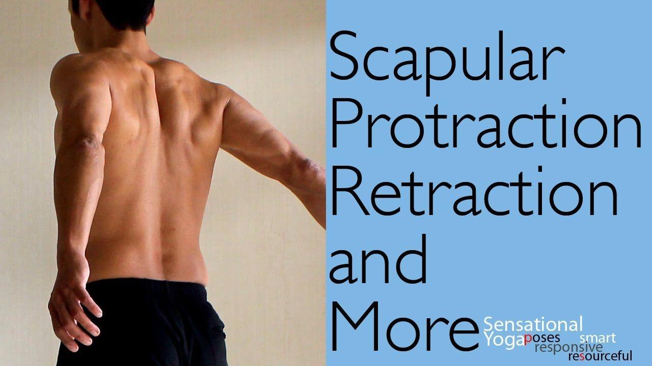 Scapular Protraction Retraction
